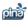 پینا | pina